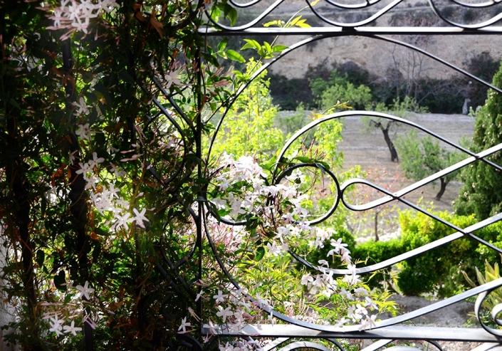 Jasmine – Almassera Vella Loggia