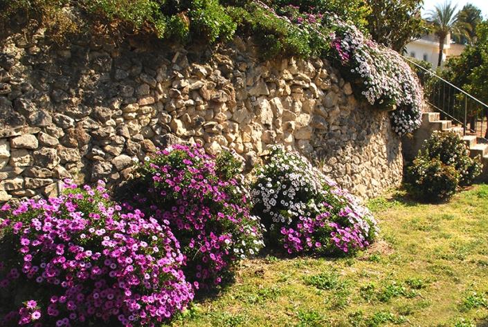 Gardens at Almassera Vella